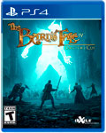 The Bard's Tale IV: Director's Cut (PS4)